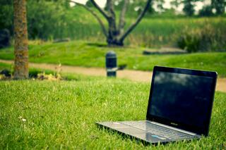The True Carbon Footprint of Your Paperless Business