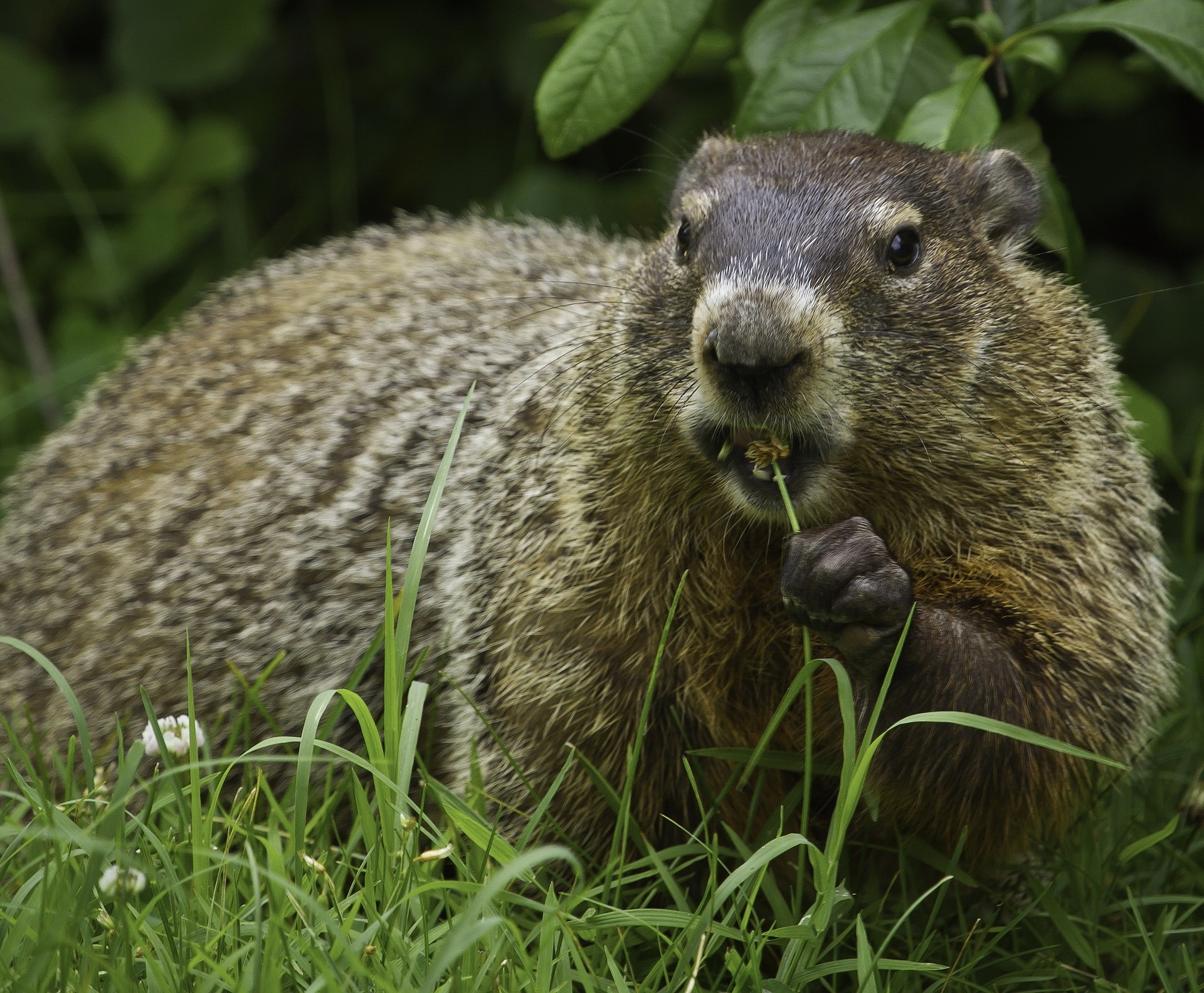 How to Keep Your Customers from Suffering the Groundhog Day Effect