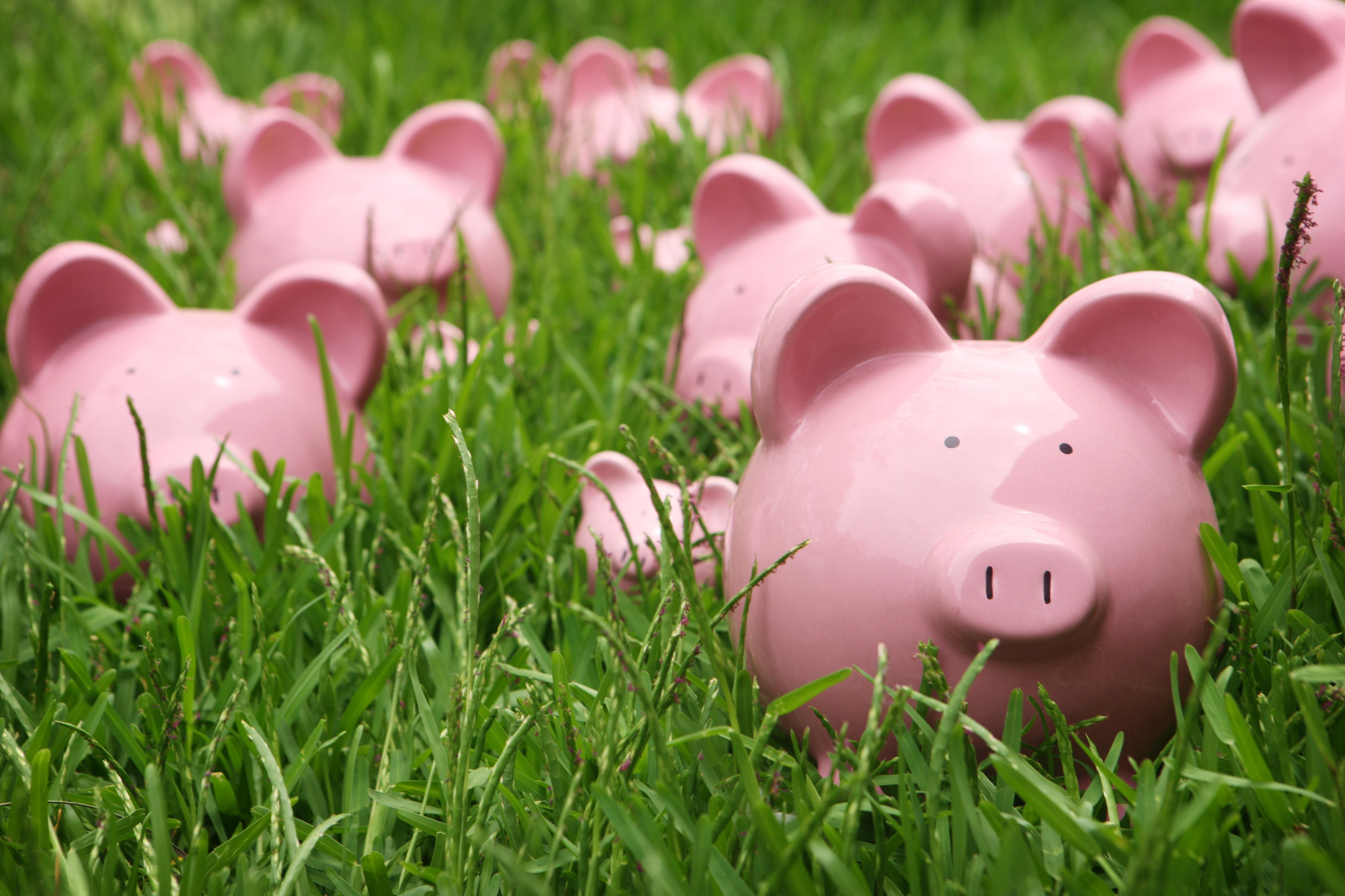 Save_Money.jpg