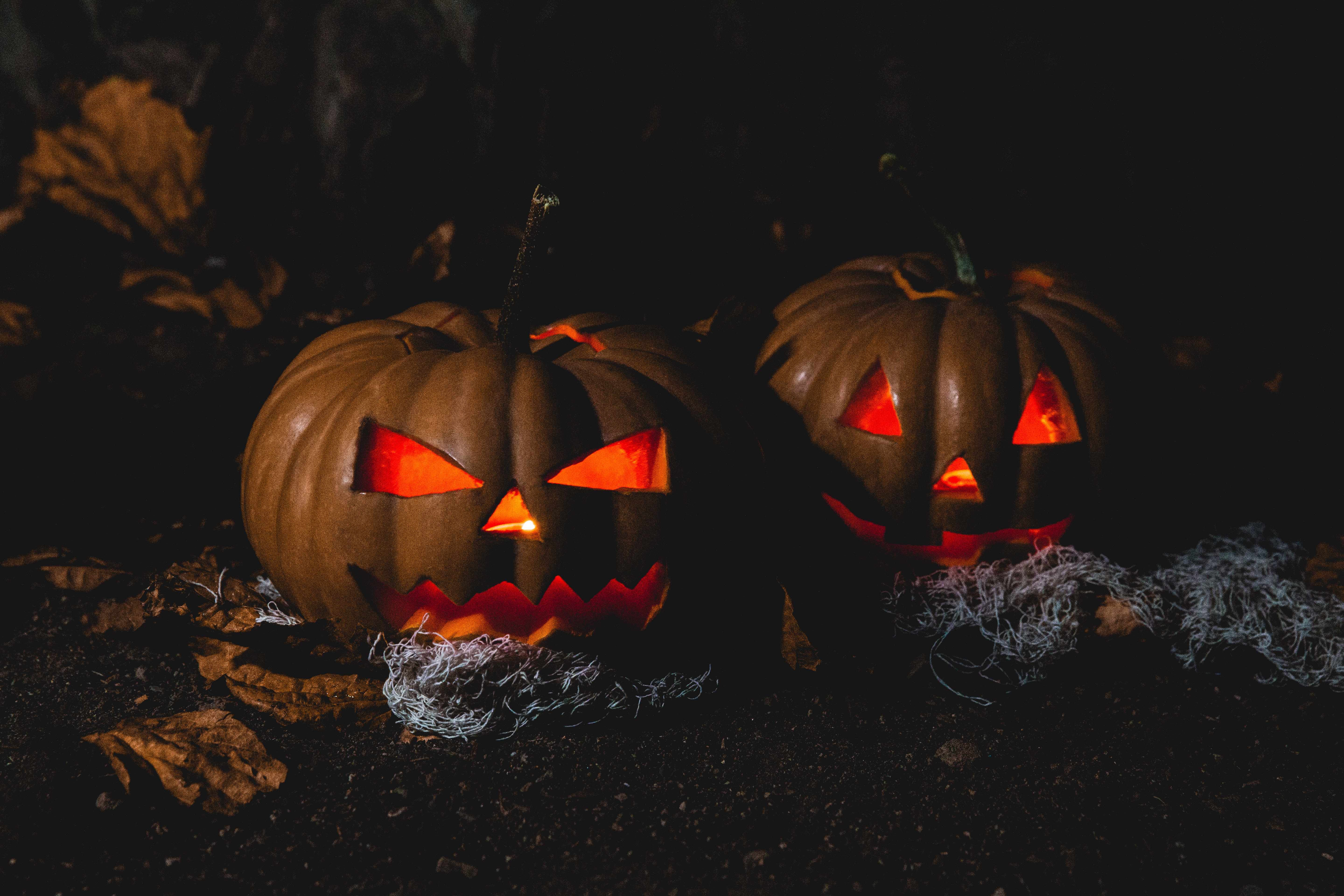 Scary Movie Inspiration: 6 Business Lesson Takeaways