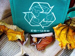 Reusable shopping bag near fall leaves