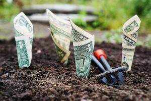 6 Ways to Invest Your Tax Refund to Grow Your Business